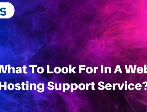 What To Look For In A Web Hosting Support Service?