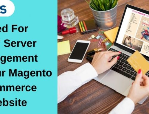 Need For 24×7 Server Management For Your Magento Ecommerce Website